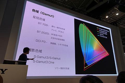 SonyShop09.jpg